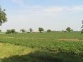 Sraz 2011